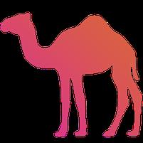 Imagem representando o domínio camels.com.br