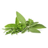 Imagem representando o domínio herbas.com.br