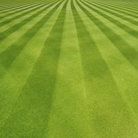 Imagem representando o domínio lawn.com.br