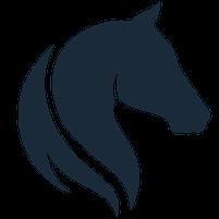 Imagem representando o domínio thehorse.com.br