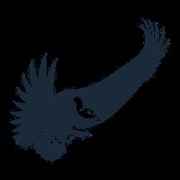Imagem representando o domínio urubus.com.br