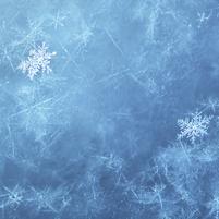 Imagem representando o domínio cold.com.br