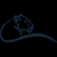 Imagem representando o domínio leoas.com.br