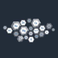 Imagem representando o domínio mineralis.com.br