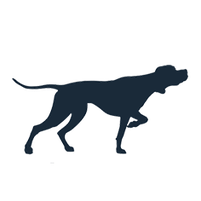 Imagem representando o domínio cacadores.com.br