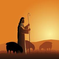 Imagem representando o domínio pastorar.com.br