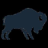 Imagem representando o domínio bison.com.br