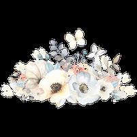 Imagem representando o domínio florzinha.com.br