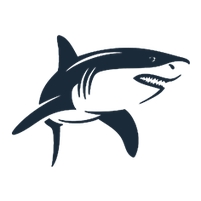Imagem representando o domínio shark.com.br