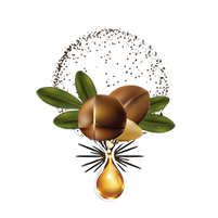 Imagem representando o domínio argan.com.br