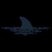 Imagem representando o domínio barbatana.com.br