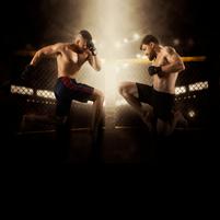 Imagem representando o domínio fight.com.br