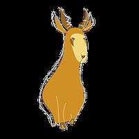 Imagem representando o domínio antilope.com.br