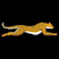 Imagem representando o domínio guepardos.com.br