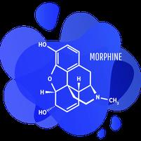 Imagem representando o domínio morfina.com.br