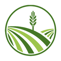 Imagem representando o domínio plantadora.com.br