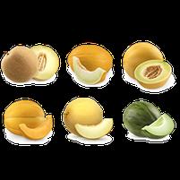 Imagem representando o domínio meloes.com.br