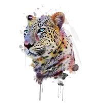 Imagem representando o domínio leopardos.com.br