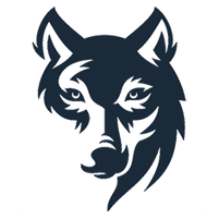 Imagem representando o domínio lobo.com.br