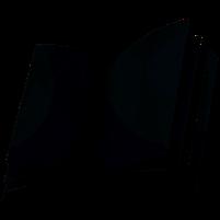 Imagem representando o domínio encyclopedia.com.br