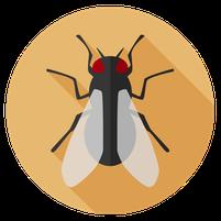 Imagem representando o domínio moscas.com.br