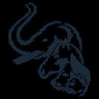 Imagem representando o domínio mamiferos.com.br