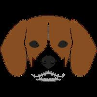 Imagem representando o domínio beagles.com.br