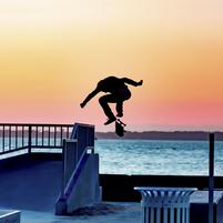 Imagem representando o domínio skatista.com.br