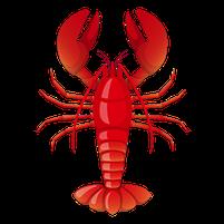 Imagem representando o domínio lobster.com.br