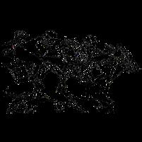 Imagem representando o domínio competir.com.br