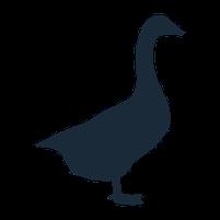 Imagem representando o domínio gansos.com.br
