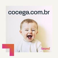 Imagem representando o domínio cocega.com.br