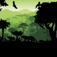 Imagem representando o domínio amazonicos.com.br