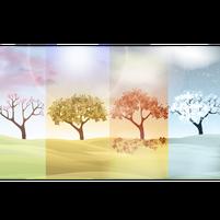 Imagem representando o domínio seasons.com.br