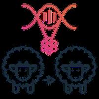 Imagem representando o domínio clonada.com.br