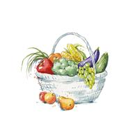 Imagem representando o domínio hortifruta.com.br