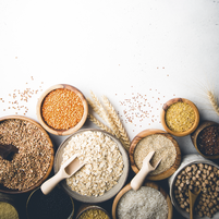 Imagem representando o domínio grains.com.br