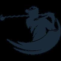 Imagem representando o domínio golfista.com.br