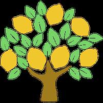 Imagem representando o domínio limoeira.com.br