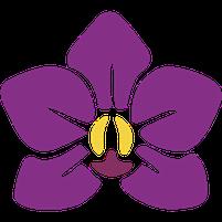 Imagem representando o domínio orquidario.com.br