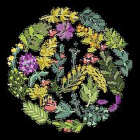 Imagem representando o domínio herba.com.br