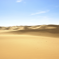 Imagem representando o domínio desert.com.br