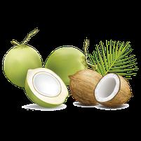 Imagem representando o domínio coco.com.br