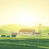 Imagem representando o domínio agropecuarias.com.br