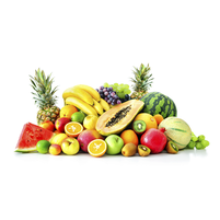 Imagem representando o domínio frutaris.com.br