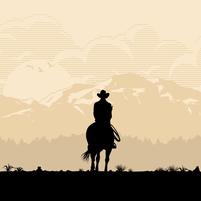 Imagem representando o domínio vaqueiros.com.br