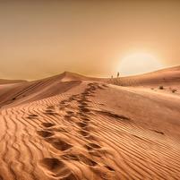 Imagem representando o domínio deserts.com.br