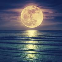 Imagem representando o domínio moons.com.br