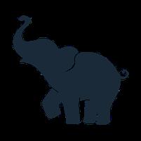 Imagem representando o domínio elephants.com.br