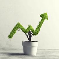 Imagem representando o domínio investirem.com.br